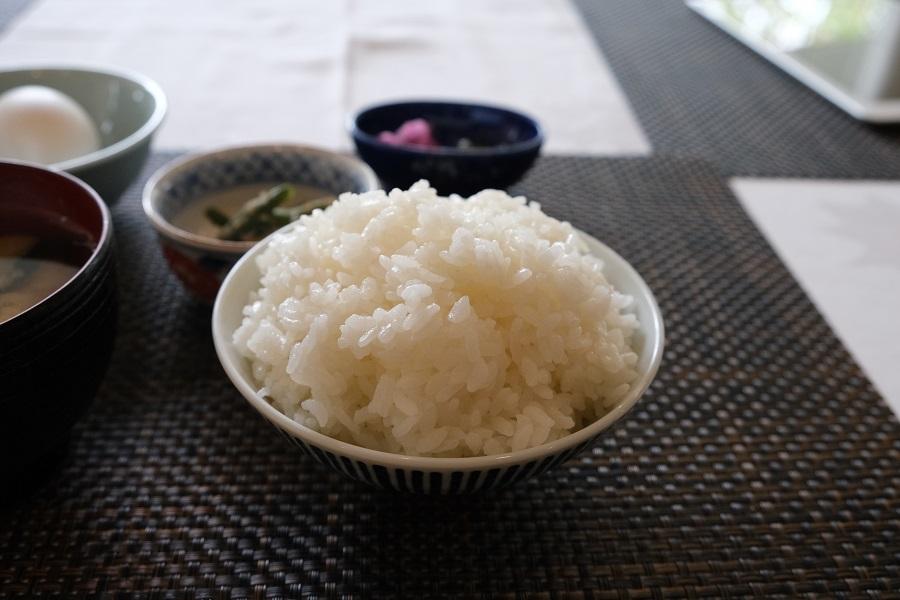 レストランテラスロンドのご飯はメダカ米の写真
